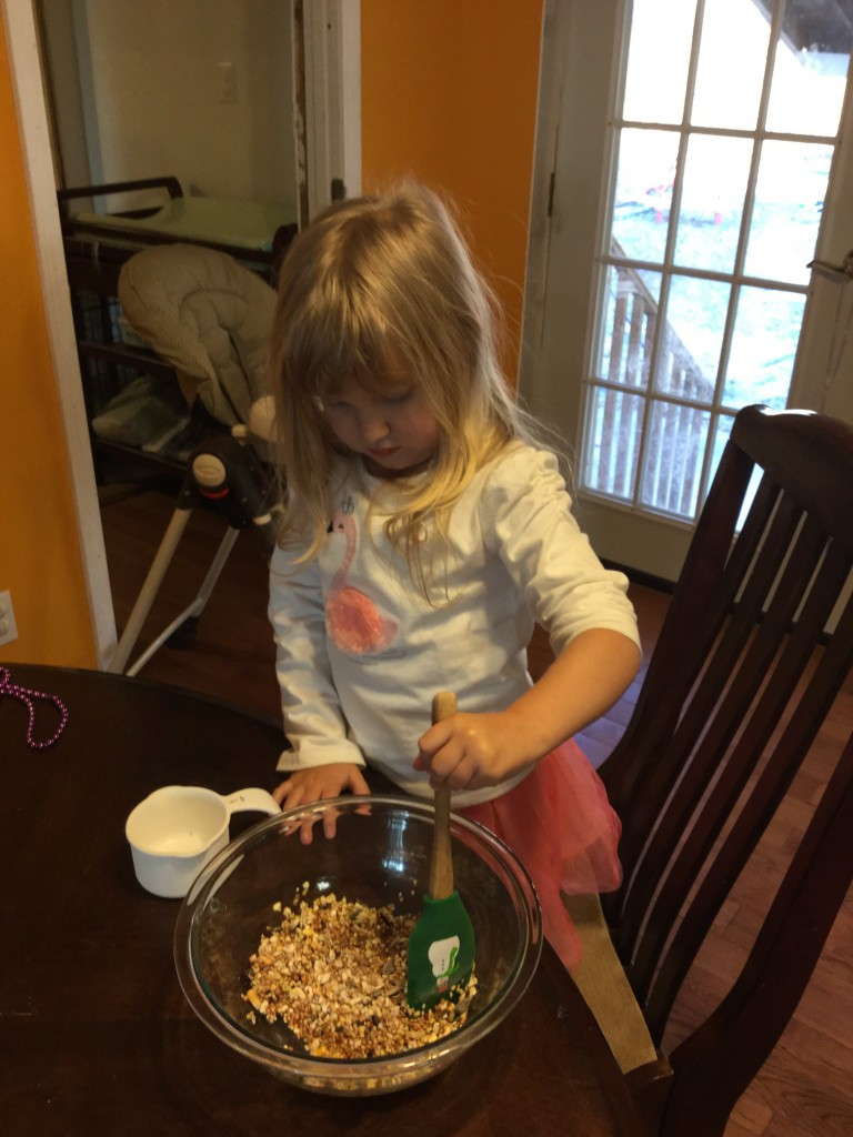 Easy No Bake Birdfeeders
