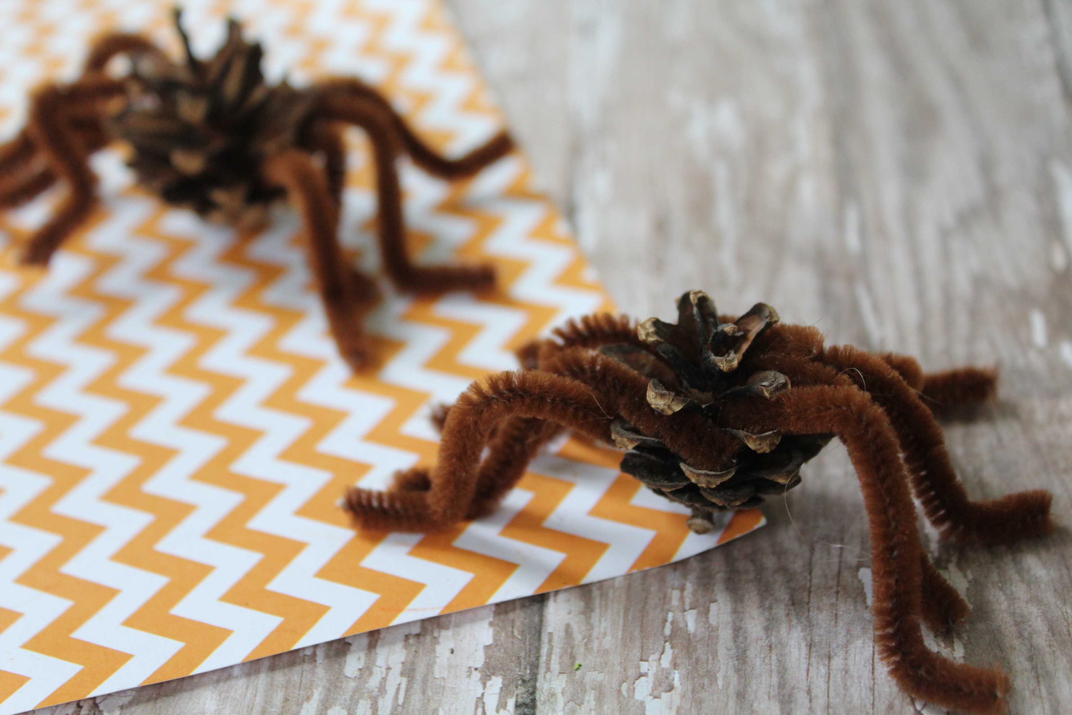 Pinecone Spider Craft The Neighborhood Moms